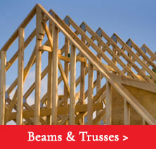 beams-trusses